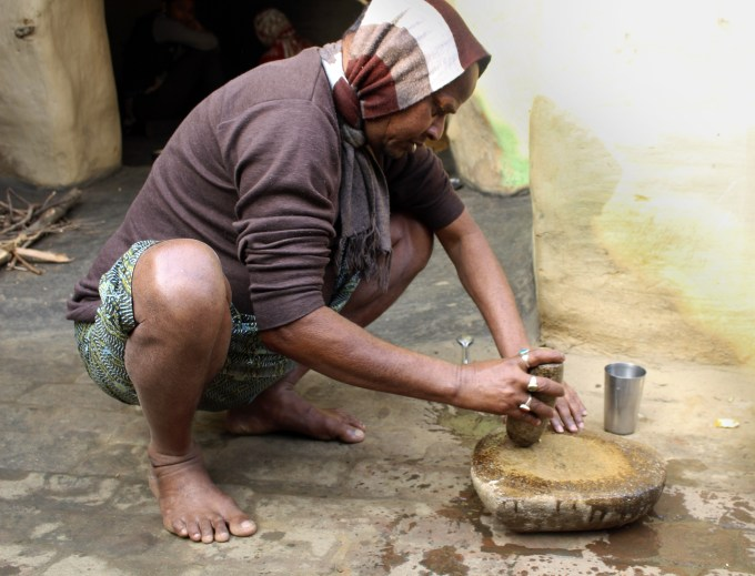 Buddheshwar Mandal places a dried root on a stone on the ground in the courtyard of his home. He then sits on his hunches and pulverizes it with a stone, with a swift, experienced motion, and watches as the water turns yellow. The resulting paste consumed fresh tastes bitter, but is meant to cure jaundice.